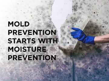 Mold prevention starts with moisture prevention